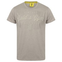T-shirt Gold's Gym: Vintage style Grey Marl